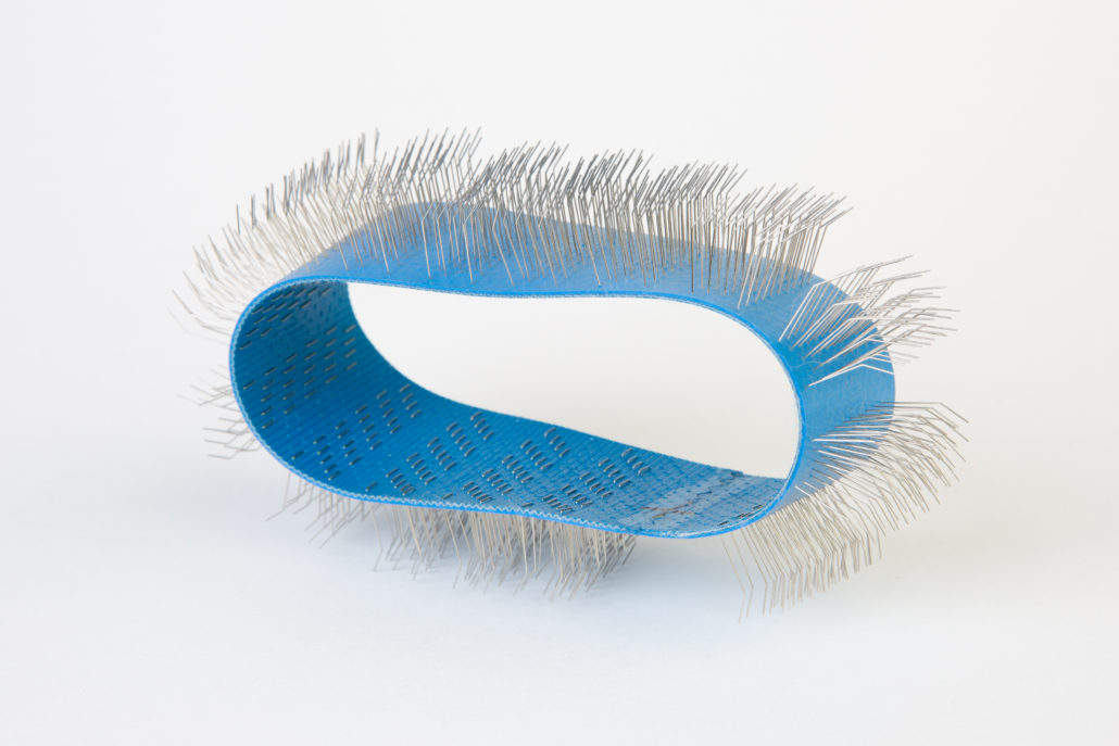 Auto Dog Brush kam blauw